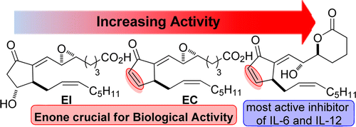 Discovery of a Highly Potent Anti-inflammatory Epoxyisoprostane-Derived Lactone.  J. Egger, P. Bretscher, S. Freigang, M. Kopf, E.M. Carreira, J. Am. Chem. Soc. 2014, 136, 17382