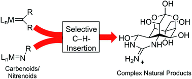 Efficient Synthesis Strategies by Application of Transition Metal-Catalyzed Carbene/Nitrene Insertions into C–H Bonds