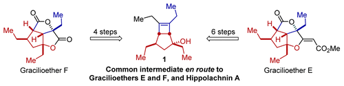 A Unified Strategy to Plakortin Pentalenes: Total Syntheses of (±)-Gracilioethers E and F.  Stefan A. Ruider and Erick M. Carreira, Org. Lett. 2015, Article ASAP