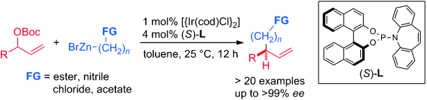 Iridium-Catalyzed Enantioselective Allylic Alkylation with Functionalized Organozinc-Bromides.  J. Y. Hamilton, D. Sarlah, E. M. Carreira, Angew. Chem. Int. Ed. 2015, 54, 7644